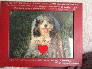En souvenir de la petite Youka de Anne-Sophie dans Souvenirs de nos amis youka2-300x225